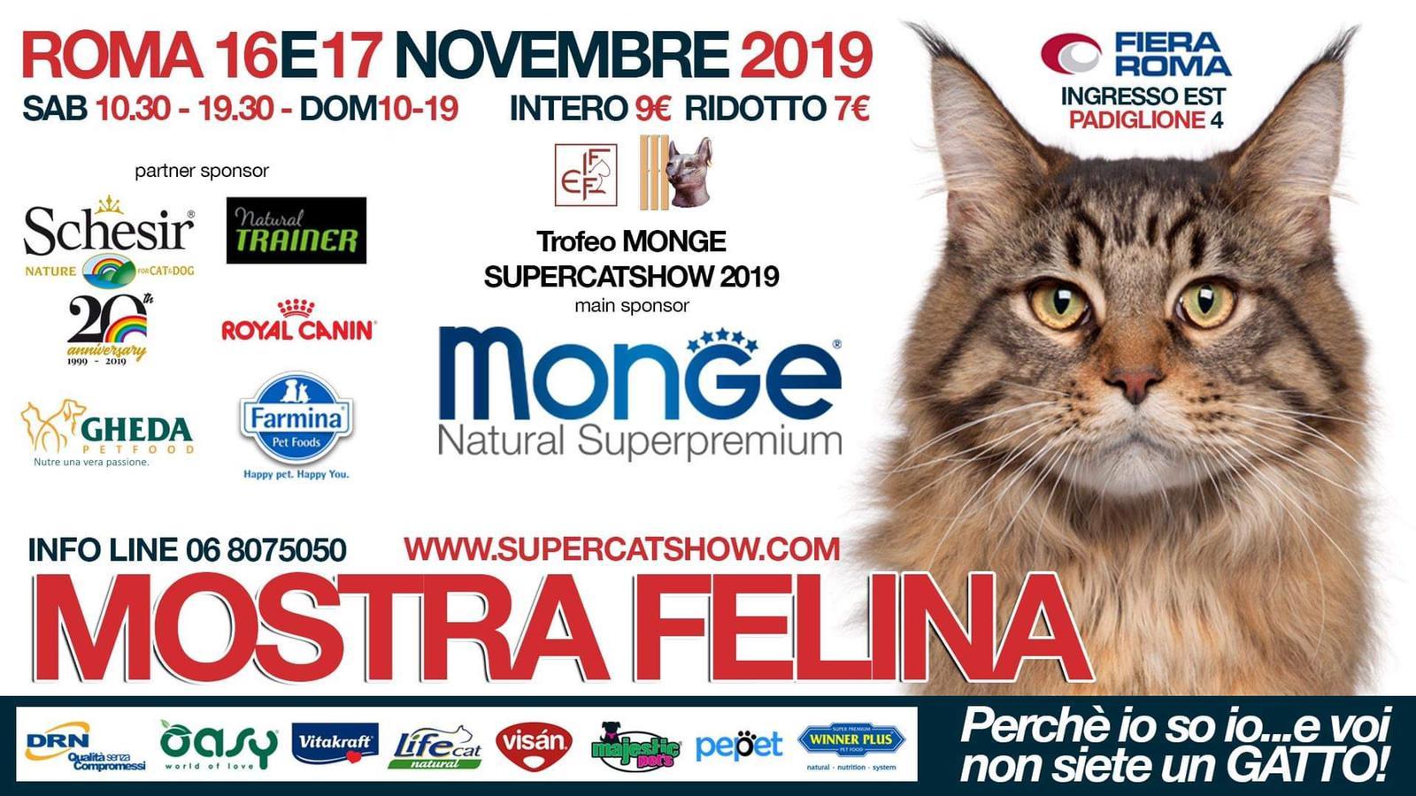 SuperCat Show 2019