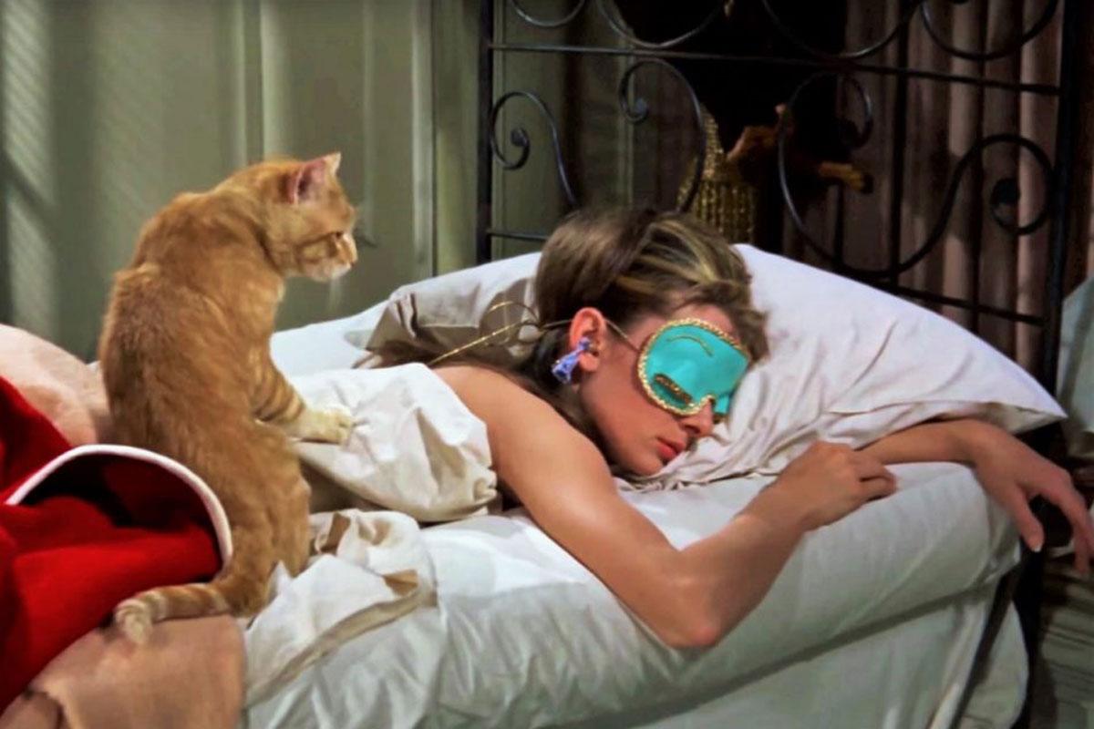 È confermato: i gatti non sono né egoisti né asociali