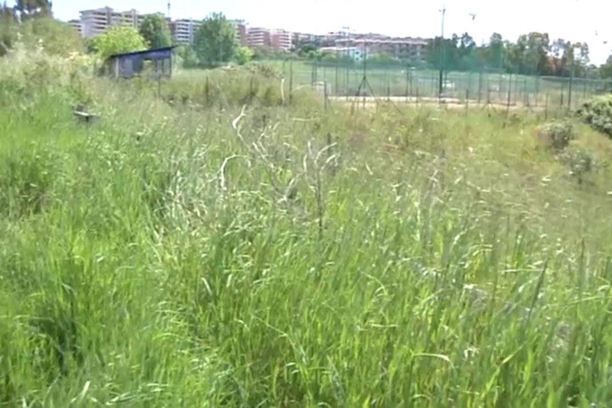 Blitz delle forze dell'ordine nel Parco della Madonnetta