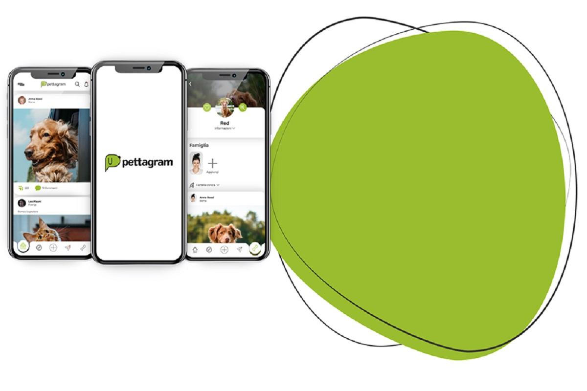 Pettagram: l'App in cui le star sono i vostri amici animali