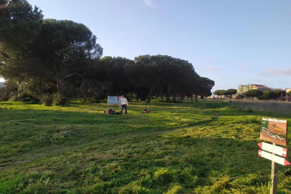 Parco del Drago: domenica 23 i volontari puliscono l'area